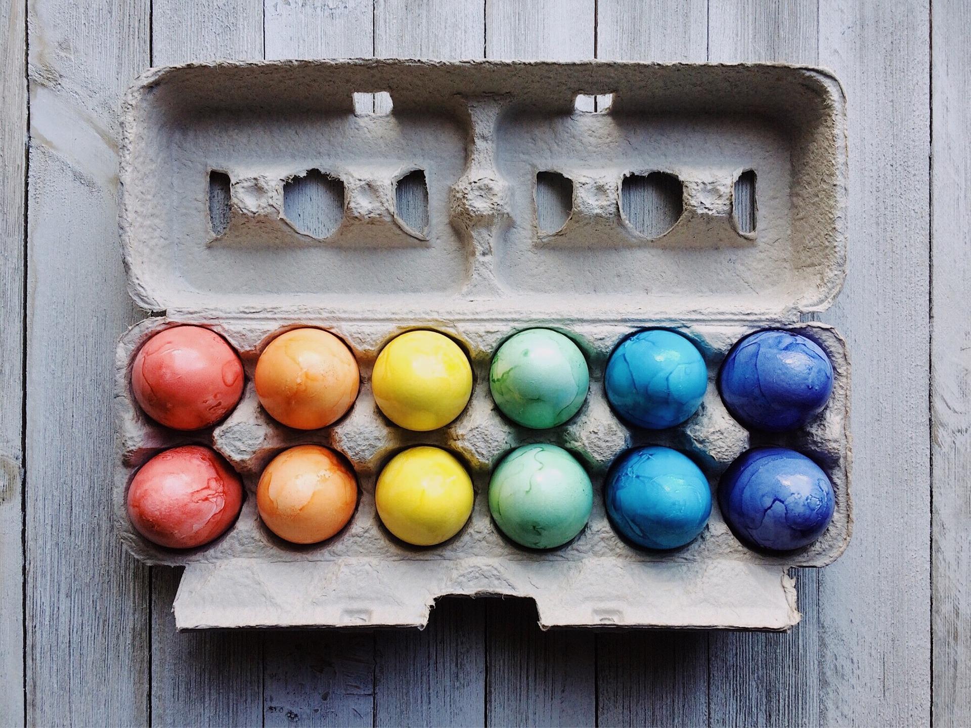 美しい卵の画像