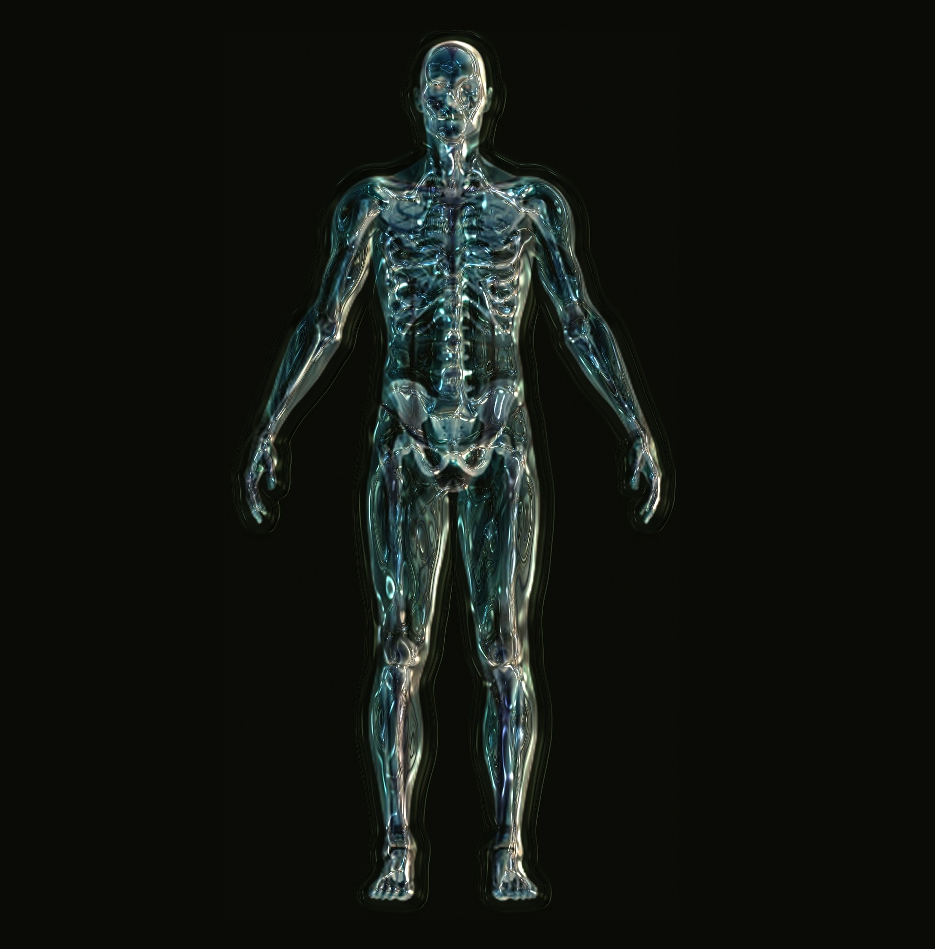 透明な人体画像