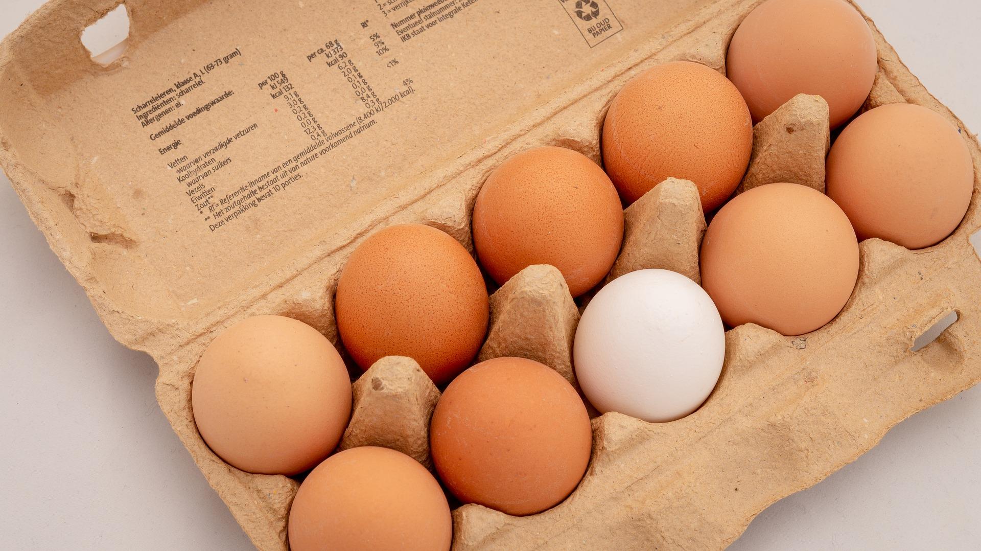 卵 10個