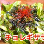 【無限レシピ】バーベキューの副菜にも!「自家製チョレギサラダ」【動画(有)】