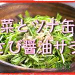 【ダイエットレシピ】和えるだけ!「水菜とツナ缶のわさび醤油サラダ」【動画(有)】