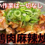 【ズボラレシピ】S&Bシーズニング「四川式鶏肉の麻辣炒め」を作ってみた【動画(有)】
