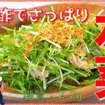 【糖質制限レシピ】ポン酢でさっぱり!「水菜とえのきの小えびサラダ」【動画(有)】