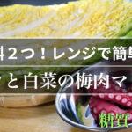 【低糖質レシピ】材料2つ!レンジで簡単 ♬「タコと白菜のマリネ」の作り方【糖質制限】