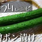 【新感覚!?】作り置きに大活躍の1品 ☆「味噌ポンきゅうり」の作り方【低糖質レシピ】