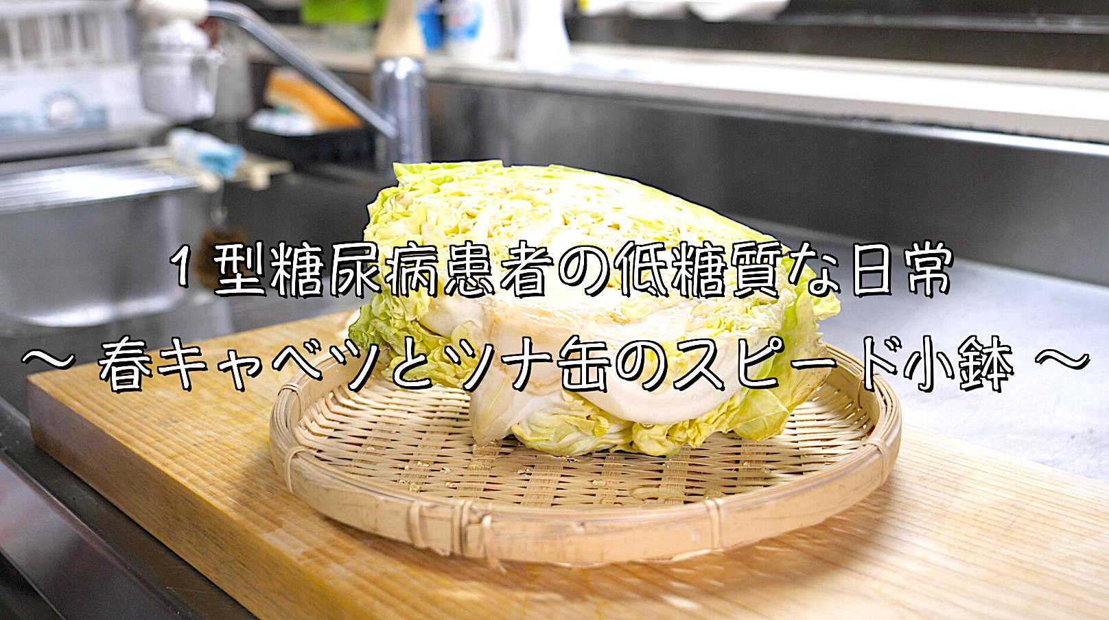 春キャベツ ツナ缶 レシピ 低糖質