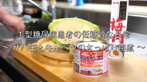 サバ缶 キャベツ レシピ 梅煮