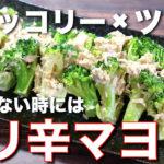 【食欲増進の万能ソース♬】火を使わない楽チンレシピ!「ブロッコリーとツナ缶のピリ辛マヨ和え」の作り方